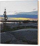 Churchill Tundra No. 1 Summer Wood Print