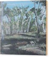 Cimmeron Grasslands Wood Print