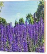 Cincy Flower Field Wood Print