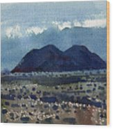 Cinder Cone Death Valley Wood Print