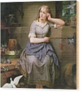 Cinderella And The Birds Wood Print