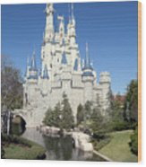 Cinderella Castle Reflections Wood Print