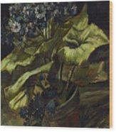 Cineraria Wood Print