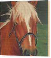 Cinnamon The Horse Wood Print