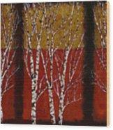 Cinque Betulle Wood Print