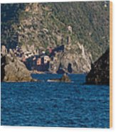 Cinque Terre Coast Wood Print