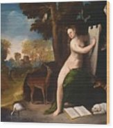 Circe And Her Lovers In A Landscape 1516 Wood Print