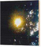 Circle Of Sunglow Through Pine Wood Print