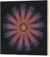 Circle Study No. 330.1 Wood Print