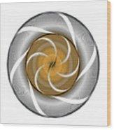 Circle Study No. 364 Wood Print