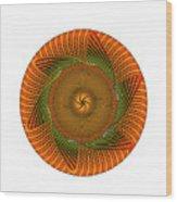 Circle Study No. 429 Wood Print
