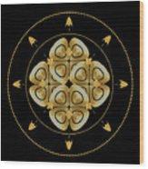 Circle Study No. 458 Wood Print