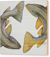 Circling Rainbow And Brown Trout Wood Print