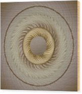 Circular Abastract Art 5 Wood Print