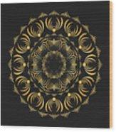 Circularity No 1575 Wood Print