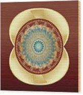 Circularity No 1641 Wood Print