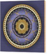 Circularium No. 2555 Wood Print