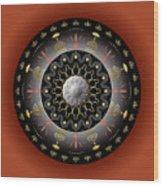 Circulosity No 2928 Wood Print