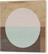 Cirkel in Peach and Mint- Art by Linda Woods Wood Print