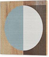 Cirkel Trio- Art By Linda Woods Wood Print