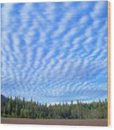 Cirrocumulus Clouds Over Mt. Mclaughlin Wood Print