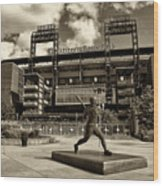 Citizens Park 1 Wood Print by Jack Paolini