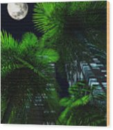 City Nights Wood Print
