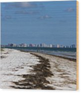 City Of Clearwater Skyline Wood Print