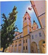 City Of Ljubljana Church And Square View Wood Print