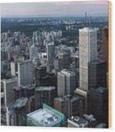 City Of Toronto Downtown Wood Print