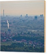 City Of Zagreb Panoramic Aerial View Wood Print