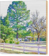 City Park 10 Wood Print