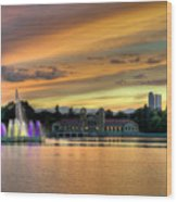 City Park Fountain At Sunset Wood Print by Stephen  Johnson