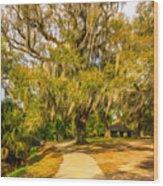 City Park New Orleans - Paint Wood Print