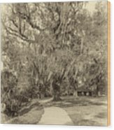 City Park New Orleans - Sepia Wood Print