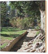 City Park Rhodes Greece Wood Print