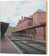 Cumberland City Station Wood Print