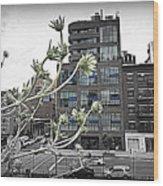 City Sway Wood Print