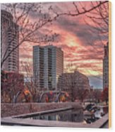 Citygarden Gateway Mall St Louis Mo Dsc01485 Wood Print