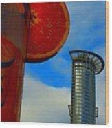 Cityscape Of Frankfurt. Wood Print