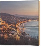 Cityscape Of Budapest, Hungary At Night And Day Wood Print