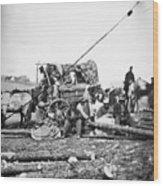 Civil War: Former Slaves Wood Print