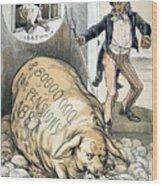 Civil War Pensions, 1888 Wood Print