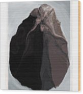Clamscape Wood Print