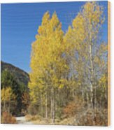 Claree Valley In Autumn - 11 - French Alps Wood Print