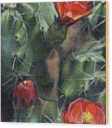 Claret Up Cactus Wood Print