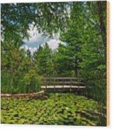Clark Gardens Botanical Park Wood Print