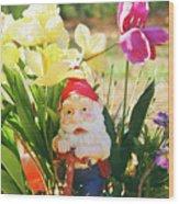 Classic Gnome Wood Print