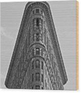 classic New York architecture Wood Print