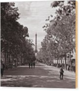Classic Paris 10 Wood Print